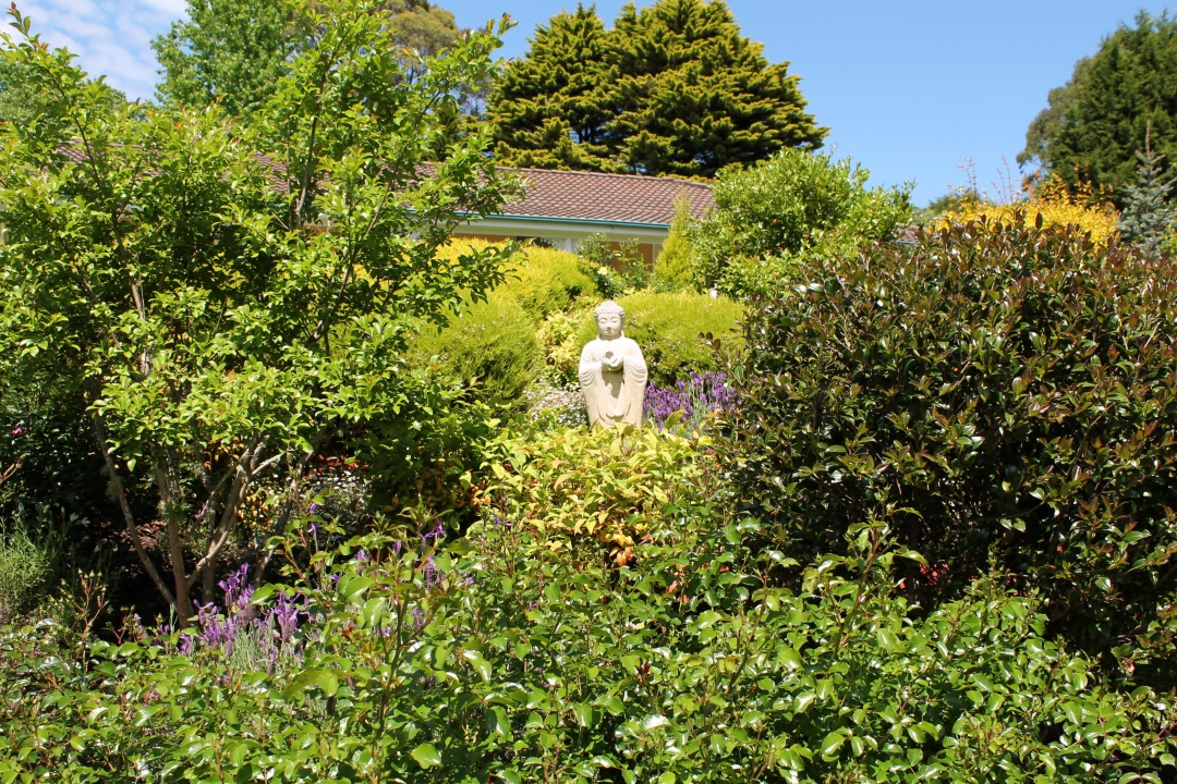 Buddha statue surrounded by shrubs.