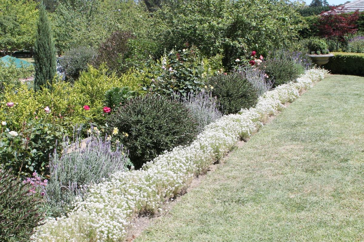Formal garden edges