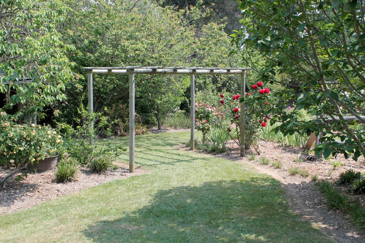 A country garden.