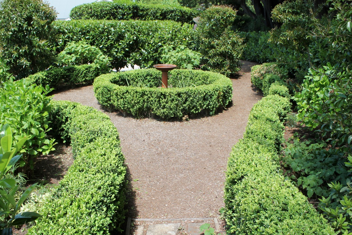 A pathway with low hedging.