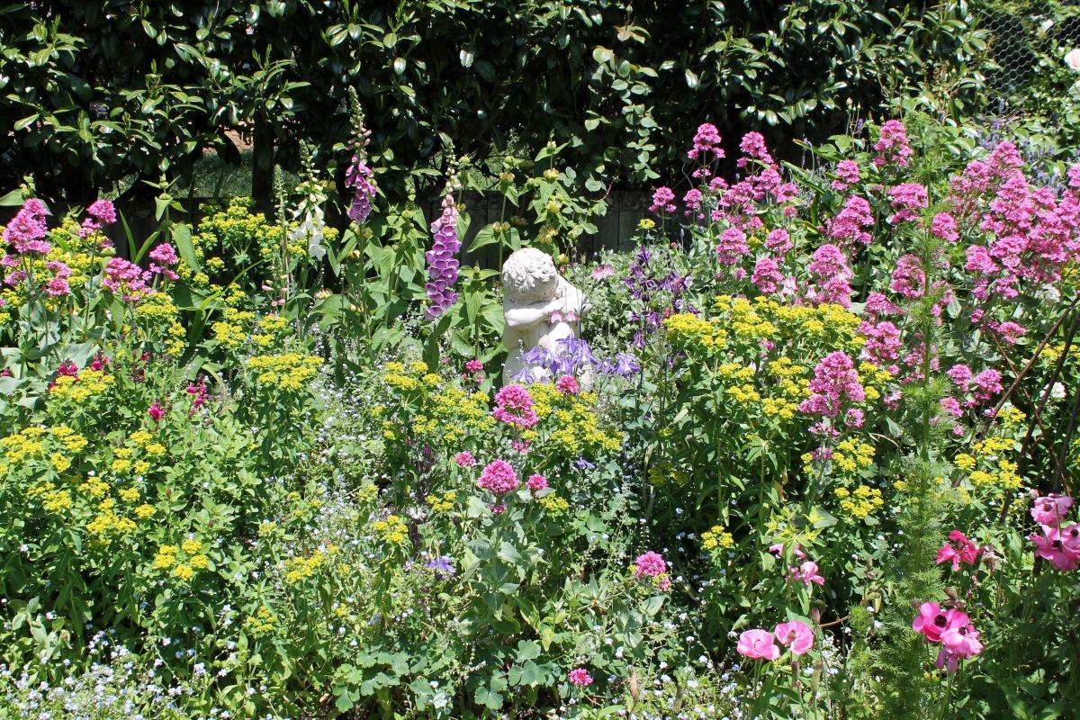 Lots of flowering plants.