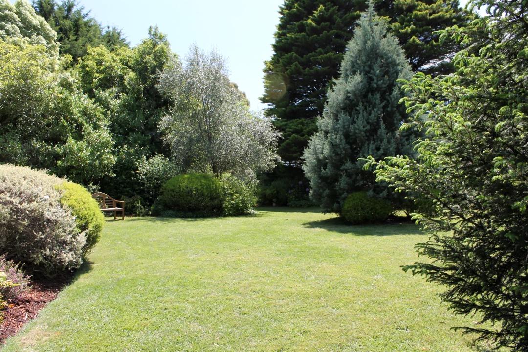 A large flat lawn.